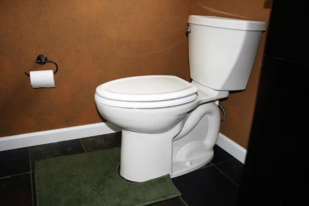 master-bath-remodel-toilet