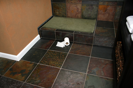 master-bath-remodel-toiletpaper2