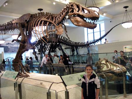 museum_naturalhistory_nyc