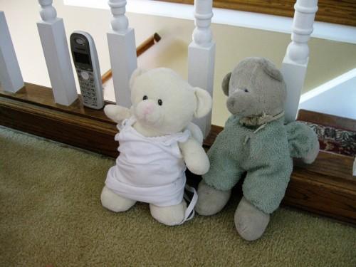 Bear_married