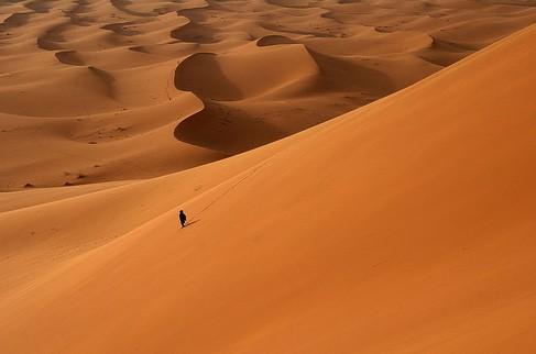sahara_desert_alone